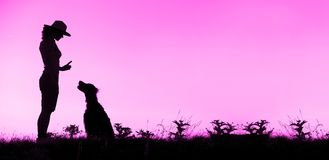 Bannière de site Web de silhouette de formation de chien dans le rose image stock