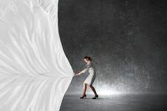 Bannière de tissu de traction de femme d'affaires Images stock