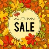 Bannière de vente avec les feuilles d'automne lumineuses Image stock