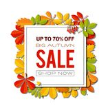 Bannière de vente avec les feuilles d'automne lumineuses d'isolement sur le fond blanc Image stock