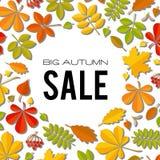 Bannière de vente avec les feuilles d'automne lumineuses d'isolement sur le fond blanc Photos libres de droits