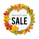 Bannière de vente avec les feuilles d'automne lumineuses d'isolement sur le fond blanc Photographie stock
