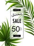 Bannière de vente d'été avec les feuilles tropicales pour la promotion Image stock