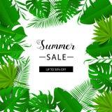 Bannière de vente d'été Lames tropicales Illustration de vecteur Bannière d'été avec la feuille du Hawaïen 3d Drapeau floral Photo stock