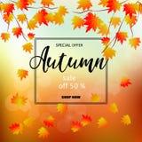 Bannière de vente d'automne avec les feuilles colorées de chute Images stock