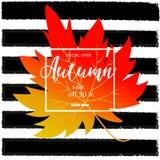 Bannière de vente d'automne avec les feuilles colorées de chute Photographie stock libre de droits