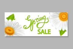 Bannière de vente de ressort, avec des camomilles Photo stock
