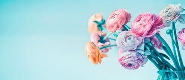 Bannière florale de turquoise avec de belles fleurs fleurissant au fond bleu-clair, floral Photographie stock libre de droits
