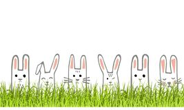 Bannière heureuse de Pâques avec les visages et l'herbe de lapin Lapins frontière ou carte de voeux Vecteur illustration libre de droits
