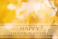 Bannière heureuse de thanksgiving, fond de tache floue d'automne Photo stock
