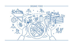 Bannière horizontale avec l'aliment biologique Composition avec des légumes de plat, différents produits frais, verdure, fruit illustration stock