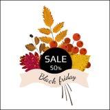 Bannière pour Black Friday avec des feuilles d'automne et des baies de sorbe illustration de vecteur