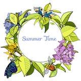 Bannière ronde avec des feuilles, des fleurs et des insectes Photos stock