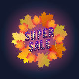 Bannière superbe de vente Automne Conception de papier Couleurs 9 d'automne Photos stock