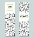 Bannière tirée par la main végétale de vecteur de vintage Affiche du marché de ferme Croquis végétarien des produits biologiques  illustration stock