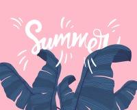 Bannière tropicale d'été avec les palmettes exotiques sur le fond rose Monstera, paume, feuilles de banane Textile exotique Photographie stock libre de droits