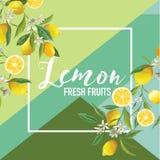 Bannière tropicale d'été de fruits et de fleurs de citron, fond graphique, invitation florale exotique, insecte ou carte Frontpag illustration libre de droits