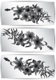 Bannières avec des fleurs Photographie stock libre de droits