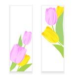 Bannières avec les tulipes roses et jaunes Photo stock