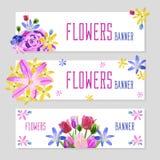 Bannières colorées de fleur image libre de droits