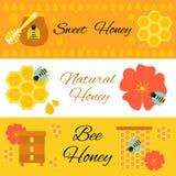 Bannières colorées de Web d'abeille de miel réglées Photo stock
