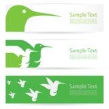 Bannières de colibri Photographie stock