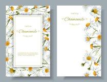 Bannières de fleur de camomille Photos stock