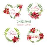 Bannières de fleurs de poinsettia de Noël et étiquettes - ensemble d'hiver Photographie stock libre de droits