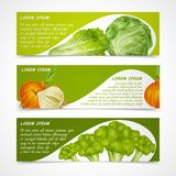 Bannières de légumes horizontales Images libres de droits