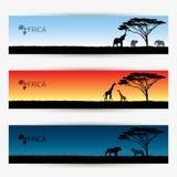 Bannières de l'Afrique Photographie stock