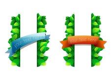 Bannières des feuilles vertes avec des rubans Photo stock