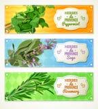 Bannières des herbes De Provence Photographie stock