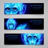 Bannières du feu de singe Image libre de droits