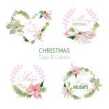 Bannières et étiquettes de fleur de Noël Images libres de droits