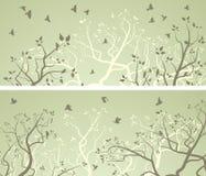 Bannières larges horizontales des branches d'arbre et volée des oiseaux Image stock