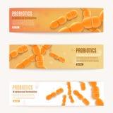 Bannières oranges horizontales de Web de vecteur de Probiotics réglées illustration de vecteur