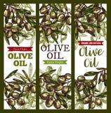 Bannières supplémentaires de croquis de vrigin d'huile d'olive de vecteur Photographie stock