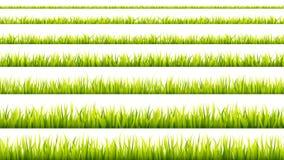 Banni?re d'herbe Pousses de c?r?ale Verdure de croissance de printemps Rayures vertes de recouvrement de gazon illustration stock
