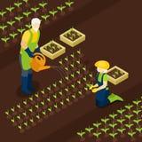 Bannière isométrique retirée Isomentric de la vie d'agriculteurs Photo libre de droits