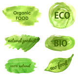 Bannières écologiques et de nature disparaissent le vert Image stock