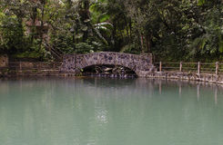 Bano Grande Pool El Yunque Puerto Rico Stock Photography