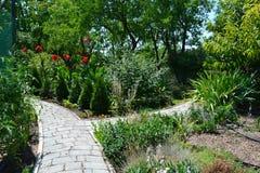 Banor i sommarträdgården royaltyfria foton