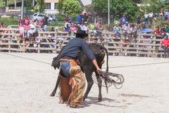 Banos de Aqua圣诞老人,通古拉瓦火山,厄瓜多尔, 2014年11月,年轻拉丁人在骑马的全国服装穿戴了在圣诞节 免版税库存照片