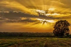 Banova Jaruga. Sunset at Banova Jaruga, west Slavonija royalty free stock photo