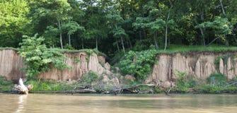 Banque de la rivière Arkansas en été avec la saleté de érosion photos stock