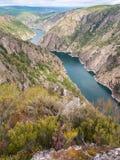 Banque Heathery de canyon de rivière de Sil dans la province d'Orense, GA Photos libres de droits