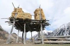 Banques de Ranwuhu des personnes tibétaines Photos stock