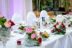 Banquet table with flowers Stock Image
