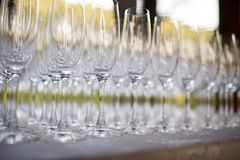 Banquet and Wedding Champagne glasses Royalty Free Stock Image