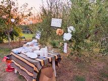 Banquete del cumpleaños, adornado con los artículos reciclados, en un campo verde Fotografía de archivo